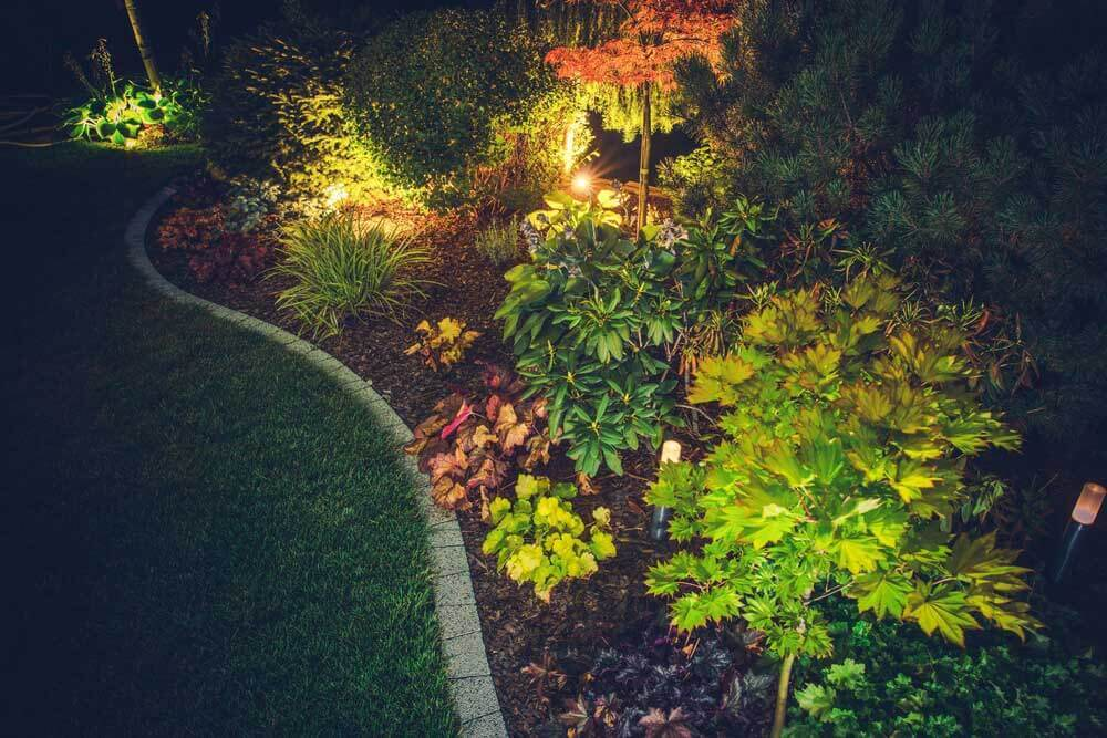 San Diego landscaping lights